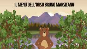 Food Week,uomo e orso