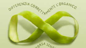 raccolta differenizata dell'organico
